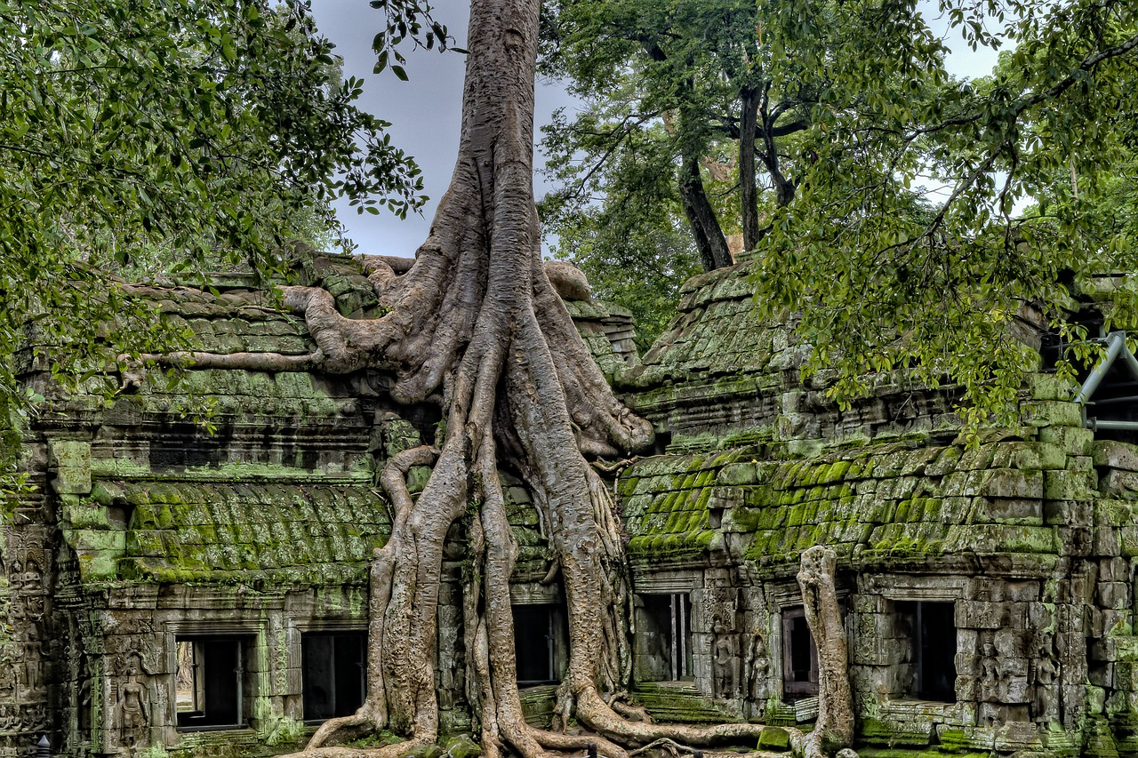 Imagen que contiene ciudad, en ruinas, vegtación